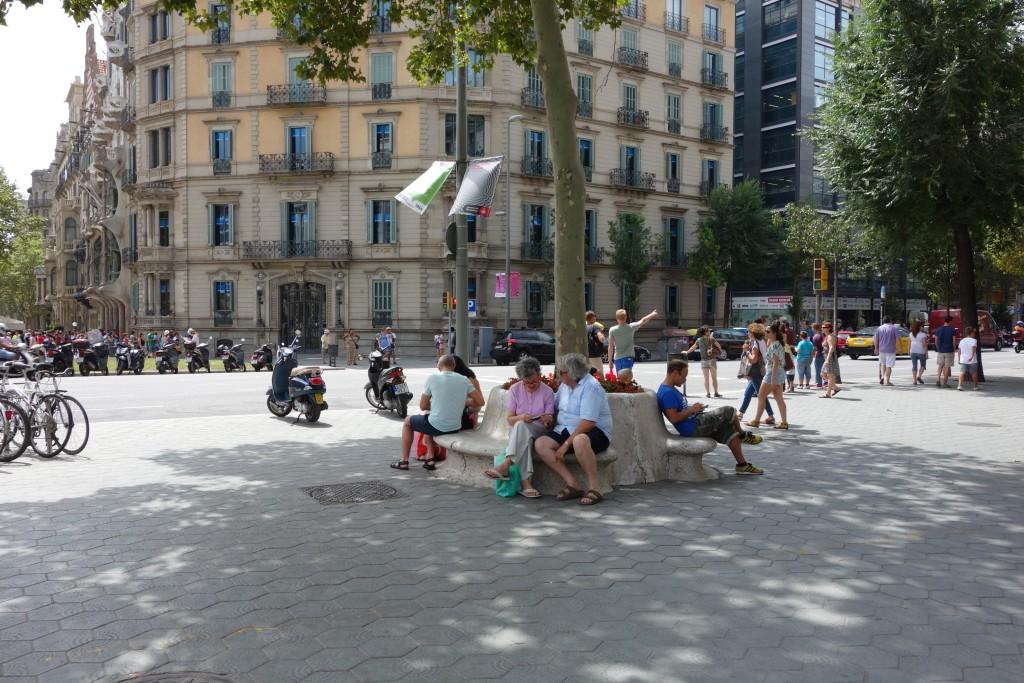 グラシア通りの樹木を囲うベンチ