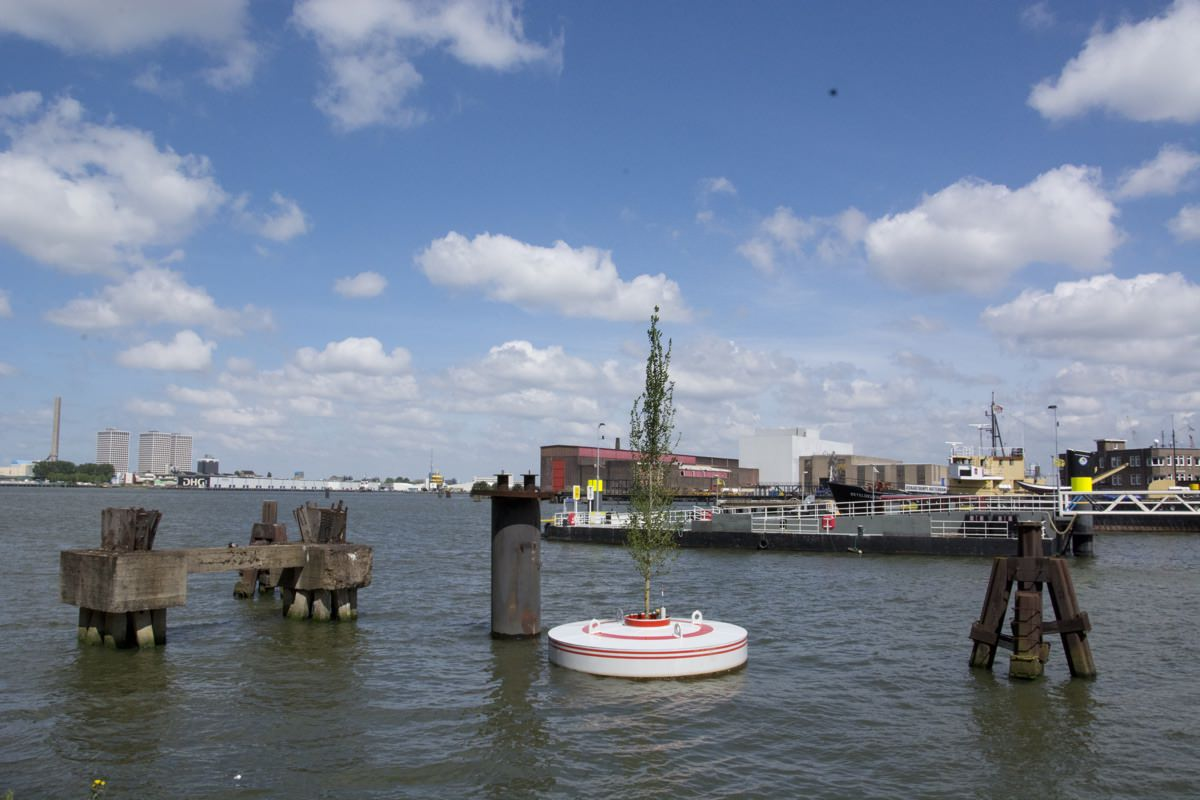 photo by pop up city WEBSITE:http://popupcity.net/a-floating-forest-for-rotterdam/