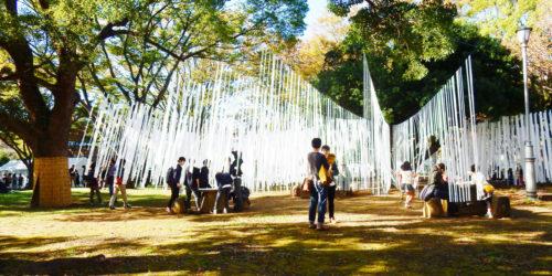 森に広がる「秋時雨」にダイブ! 経験引き継ぐ学生団体が広場をプロデュース