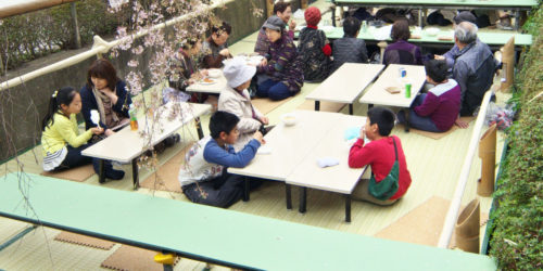 都市河川を活用した市民の居場所作り「かまがわ川床桜祭り」(ソトノバ・アワード2017一次WEB投票記事)